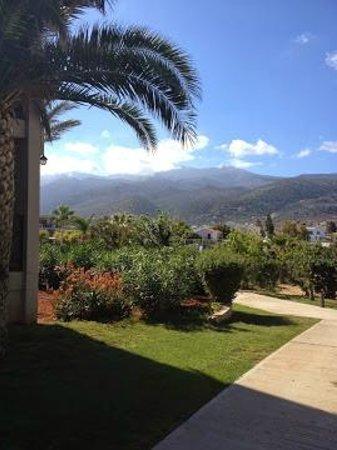 Dessole Malia Beach Hotel : mountain view