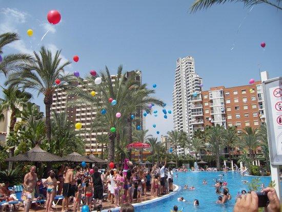 Sol Pelícanos Ocas: Charity Day at the Hotel