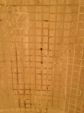 Grand Hyatt Sao Paulo: disgusting black fungus in shower