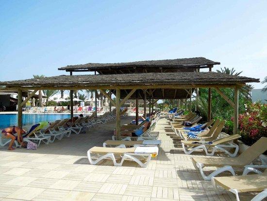 aux abords de la piscine picture of seabel rym beach midoun tripadvisor. Black Bedroom Furniture Sets. Home Design Ideas