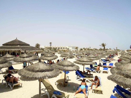 Seabel Rym Beach : Les parasols