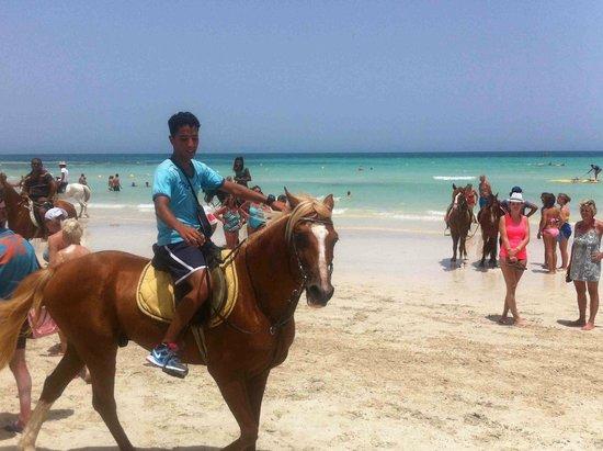 Seabel Rym Beach : Anis