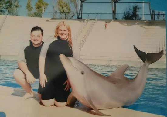 dolphin encounter at Aquopolis!