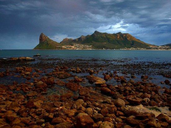 Safari 365 - Day Adventures: Cape Town & Table Mountain Tours
