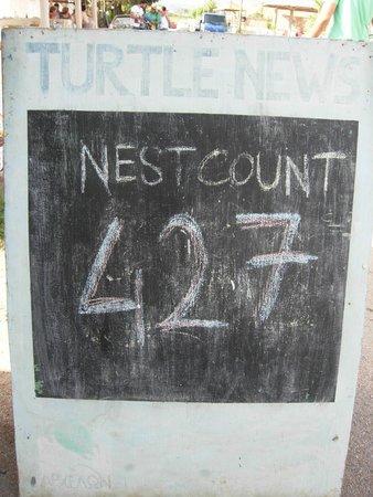 Irida Resort Suites: Tabellone col numero giornaliero di nidi trovati