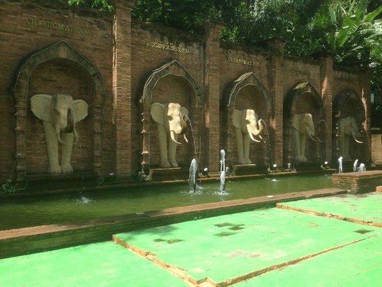 Chiang Mai Zoo: ZOO Chiang Mai