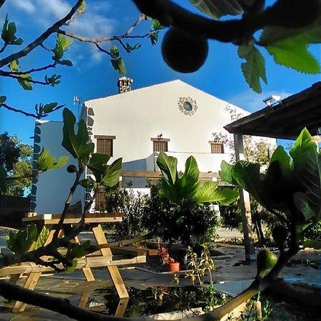 Alojamientos Rurales Berrocal: Vista de las casas desde el jardin.