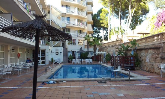 Globales Palmanova Palace: Hotel poolen