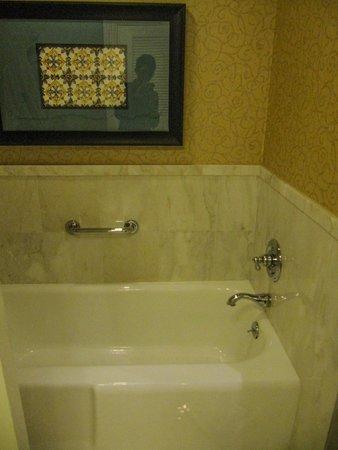 The Ritz-Carlton Orlando, Grande Lakes: The tub