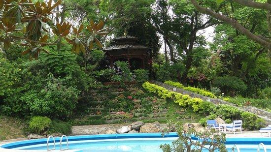 Hotel Yak & Yeti: garden