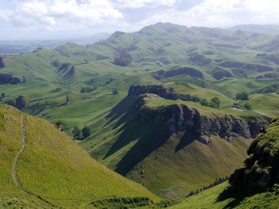 View to north from Te Mata Peak