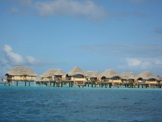 Le Taha'a Island Resort & Spa : Hotel