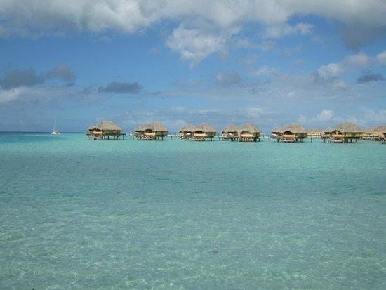 Le Taha'a Island Resort & Spa : Hotel et lagon