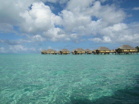 Le Taha'a Island Resort & Spa: Hotel et lagon