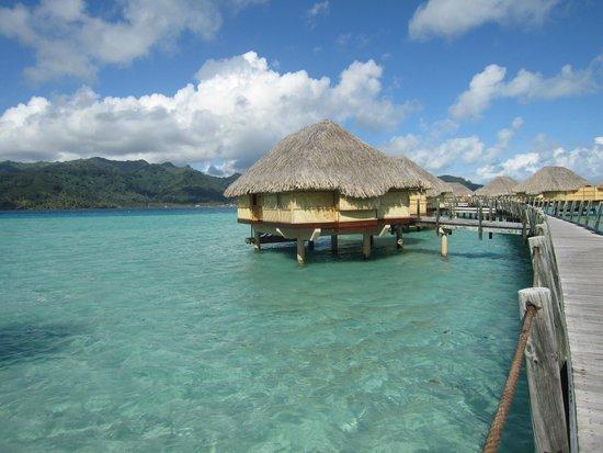 Le Taha'a Island Resort & Spa: Hotel