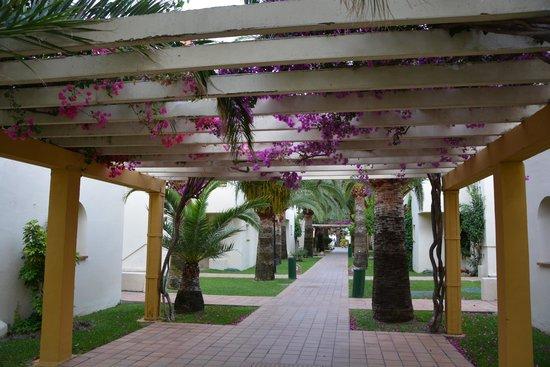 Hotel Pueblo Camino Real: Accès à la chambre