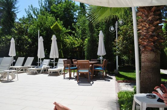Opus Apart Hotel: Pool side