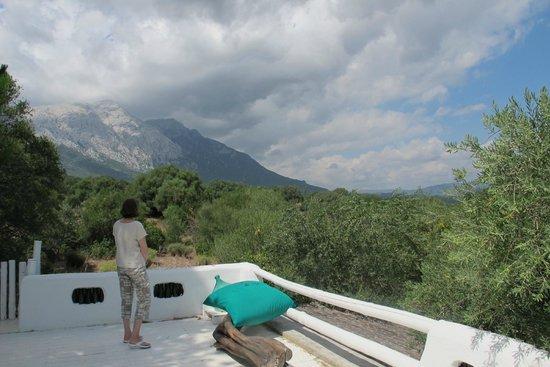 Su Gologone: Viewing platform on top of the cigar lounge
