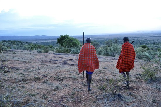 Maji Moto Eco Camp : A guided walk near the camp with your Masai hosts
