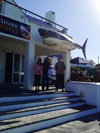 White Shark Diving Company: In the front of the White Shrk Diving Company, before the cage diving