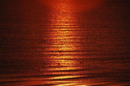 The Grafton: sea at sunset