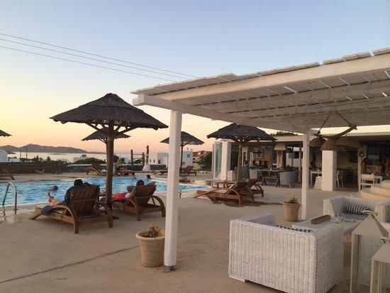 Anemoi Resort: бар