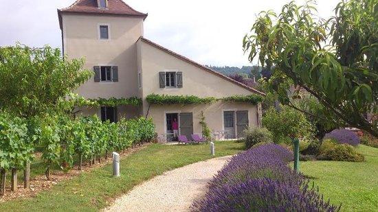 Hotel Spa Le Saint Cirq: Habitación abierta al jardín
