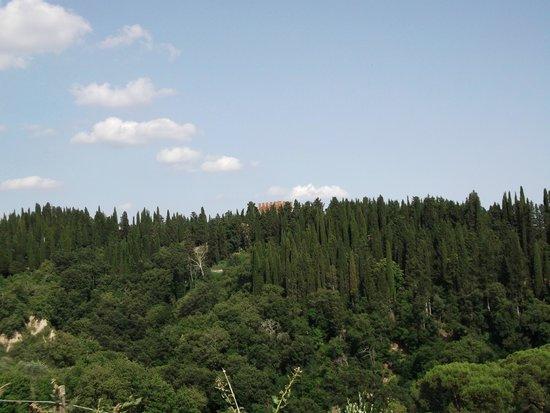 La Torre di Monte Oliveto