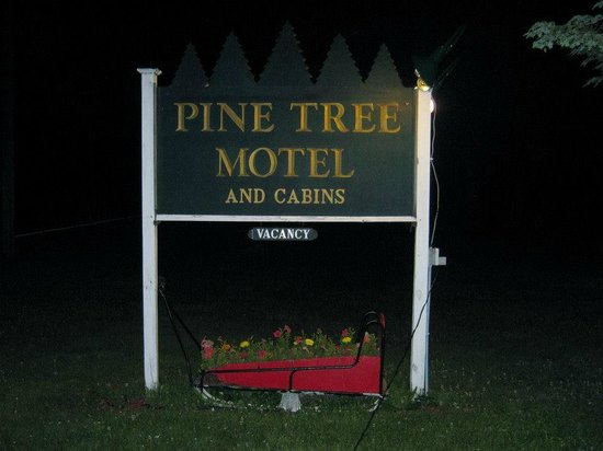 Pine Tree Motel & Cabins!