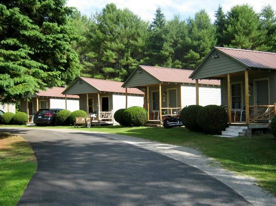 Pine Tree Motel & Cabins : Picture of some of the cabins