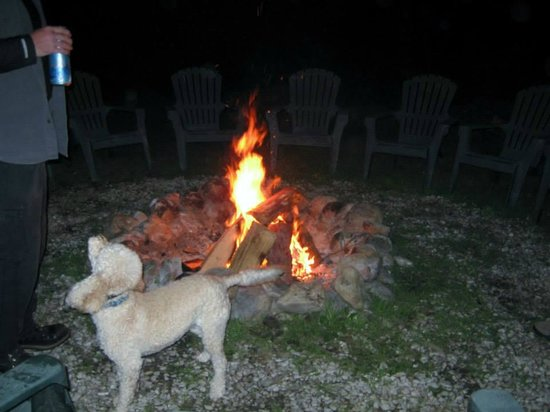 Pine Tree Motel & Cabins: Great fire pit area, owners dog.