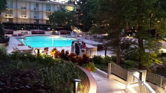 Marriott St. Louis Airport: Pool Area
