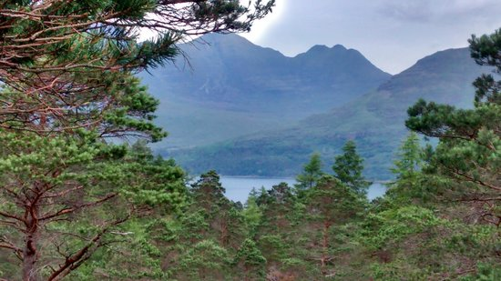 The Torridon Inn : Another one from the walk