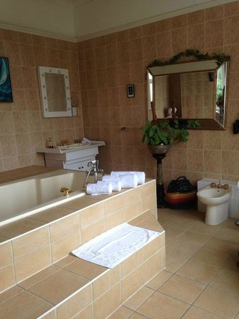 Bleak House: Our Bathroom