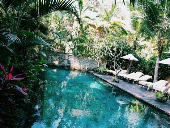 Puri Sunia Resort: Pool view