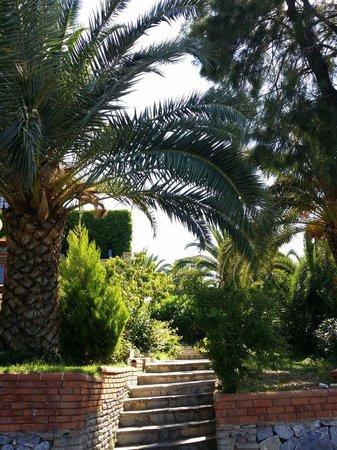 Pine Bay Holiday Resort: Zum Bungalows