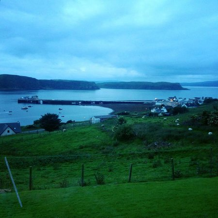 Harris Cottage Bed and Breakfast: THE View