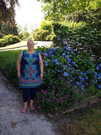 Lakeside Hotel: Beautiful gardens - blue hydrangea