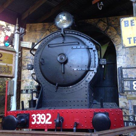 Leuralla: Authentic steam engine