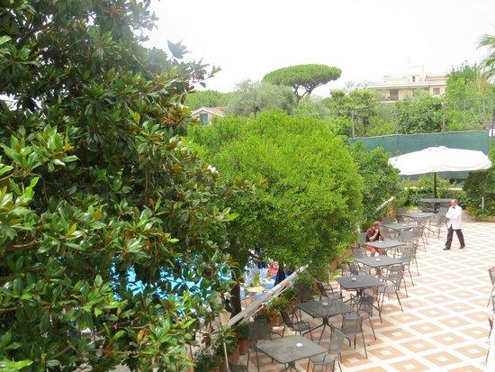 Alpha Hotel: Alpha gardens 06/2014