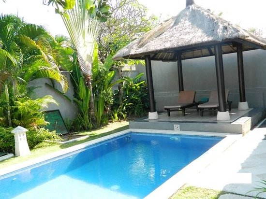 Bali Merita Villa & Spa : Pool View 2