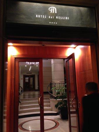 Hotel Dei Mellini: Entrance