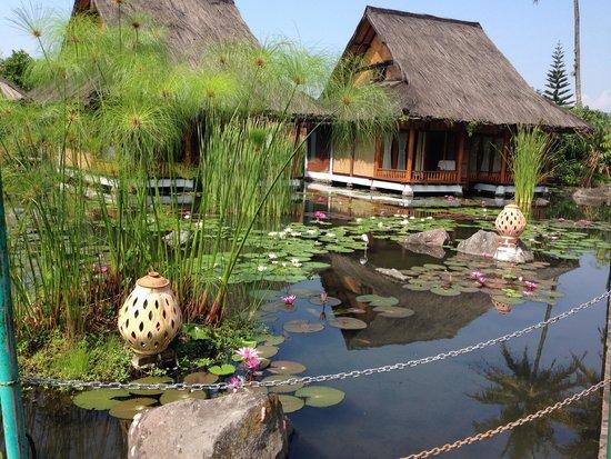 Foto kamar kampung sumber alam