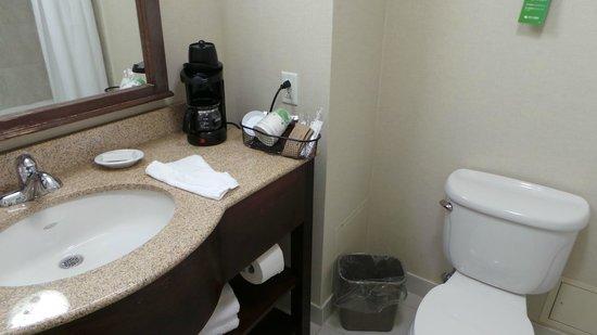 Hampton Inn & Suites by Hilton Saint John: Salle d'eau