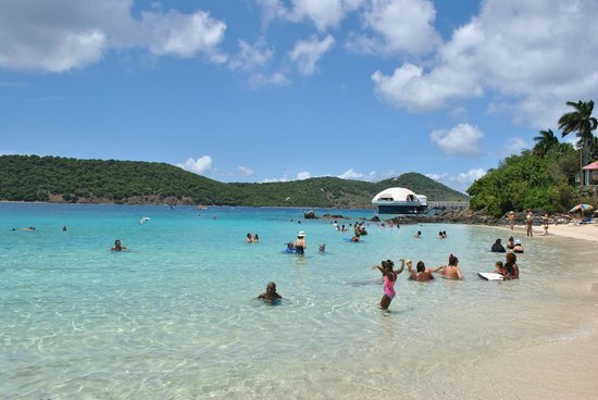 Coki Point Beach : beautiful and great for snorkeling