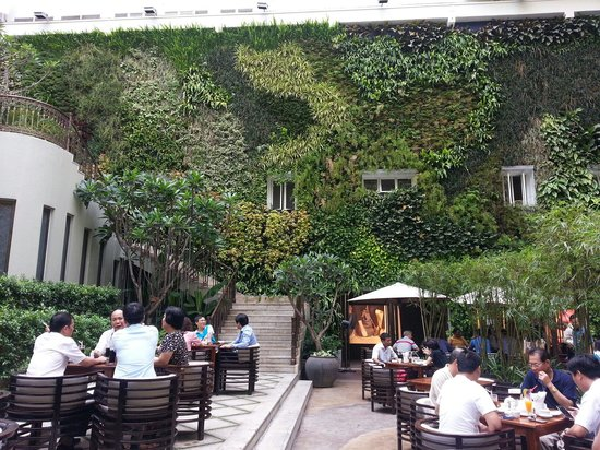 Luscious green wall at the Rex Hotel HCM