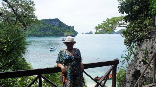 Mu Ko Ang Thong National Park : Вид с вулкана на море