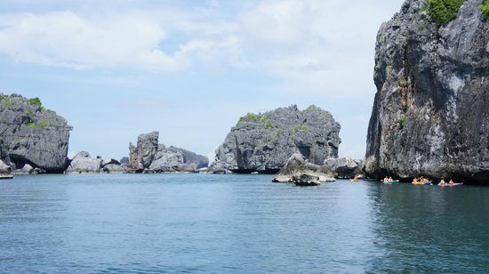 Mu Ko Ang Thong National Park : отрова парка