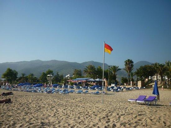 Diamore: Пляж