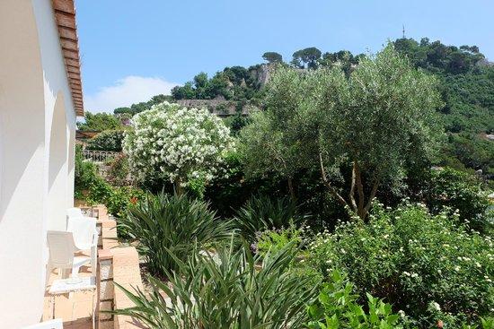 Hotel 4 Stagioni : terrace garden